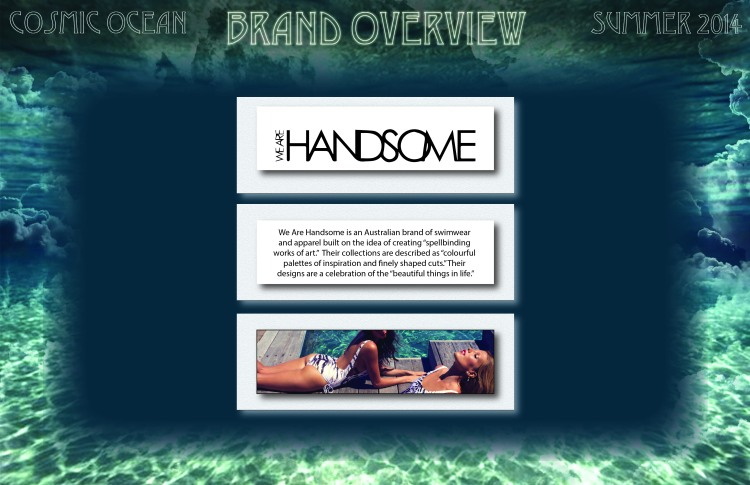 We Are Handsome Brand Overview
