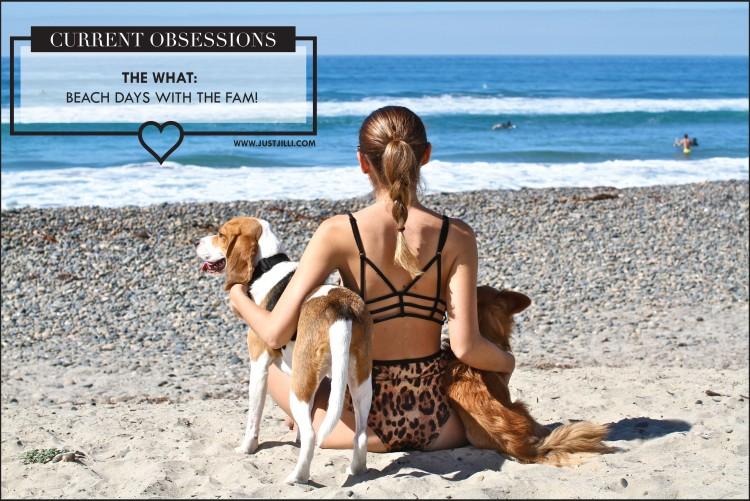 Carlsbad State Beach, UNIF swimwear, OneTeaspoon bikini, Beagle,