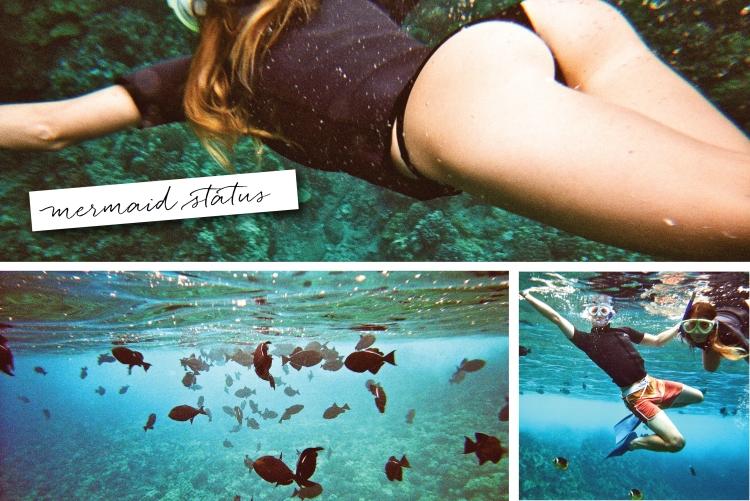 Molokini, Maui, Underwater Photography
